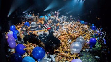 Pro Footage Watch Phish Make It Rain Cats Dogs During